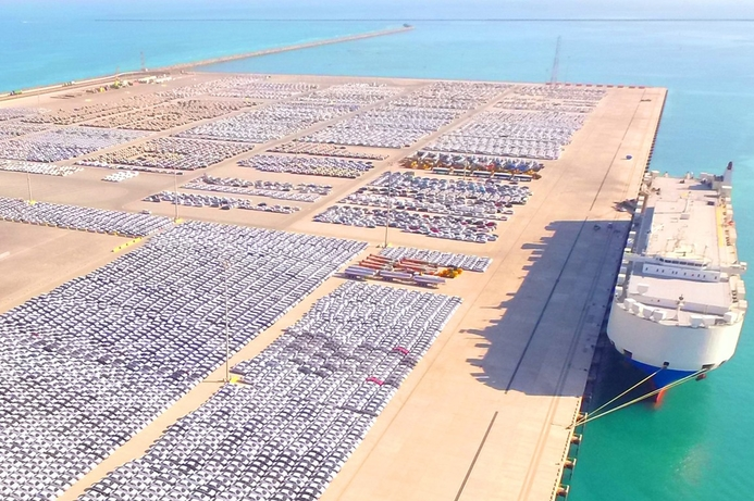 Abu Dhabi Ports launches new cargo e-services