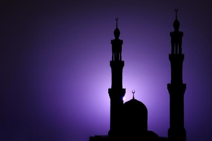 STC reports record data traffic in Mecca