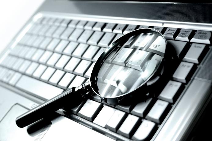 NSA 'hijacked' criminal botnets to install spyware