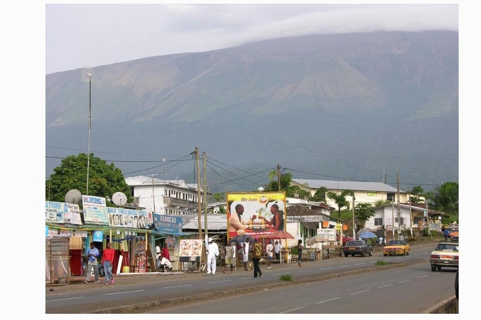 Cameroon's voice revenues worth $1.3bn by 2017