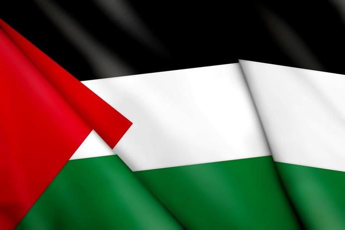 Palestine boosts international connectivity