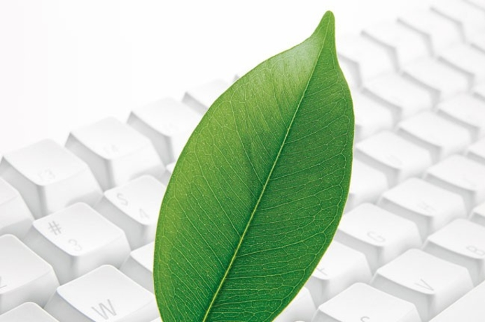 Xerox partners with Print Releaf for reforestation