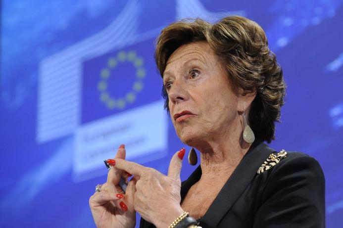 EU calls for globalisation of Web governance