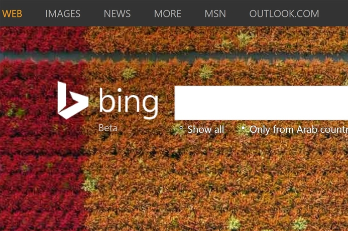 Microsoft's Bing launches 'right to be forgotten' form