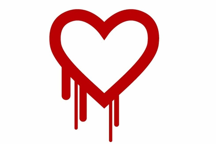 Du managed services to detect Heartbleed