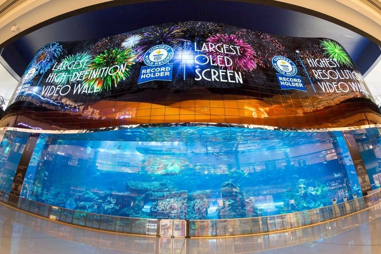 Dubai Aquarium & Underwater Zoo breaks world records with HD video wall