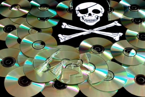 UAE leads ME efforts in fight against piracy
